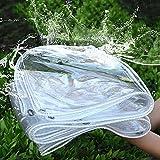 Telone Impermeabile Esterno Trasparente Telo 3x3.5m Rinforzato PVC Telone di copertura Protettivo...