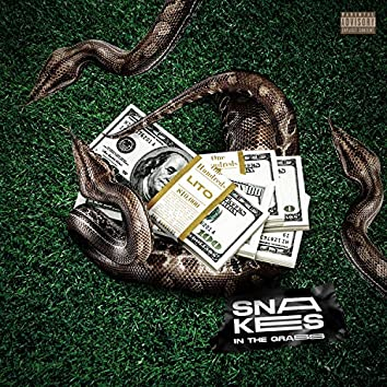 Snakes in the Grass