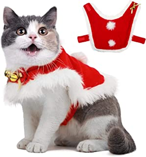 Best pet holiday costumes Reviews