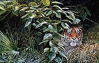 パズル子供男の子500個タイガース大型猫動物クリスマスプレゼント52x38cm
