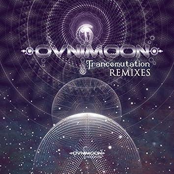 Transmutation Remixed