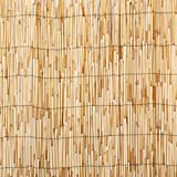 Master Garden Products RF Reed Fence, 2 x 14-Feet, Yellow