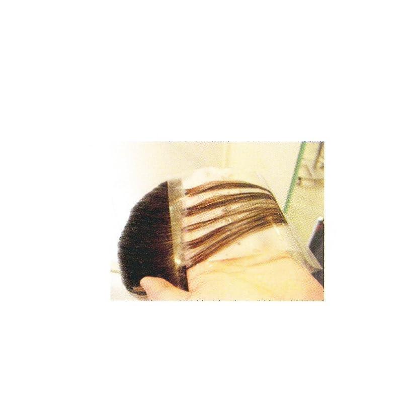 ジェームズダイソン吸収剤構成フローラPPパネル徳用パック(80枚入り) L 250mm×90mm