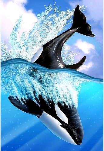 Delfine & Wale, Holzpuzzle, Aquatic Mammal Fish Collection, Perfekter Schnitt & Passform, 300 500 1000 1500 2000 Stück Lorbeerwald-Spielzeug für Erwachsene Sommus SY (Farbe   C, Größe   2000pc)