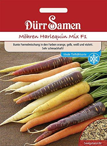 Möhren Halequin Mix, Bunte Karotten ca. 500 Korn