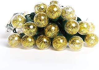 Jemmy Ho Globe String Lights,9.2ft 25 LED Globe String Lamp UL Listd 120V Hanging Indoor/Outdoor String Lights for Garden,Christmas Tree,Bistro,Cafe