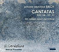 Bach, J.S.: Cantatas 146/103/3