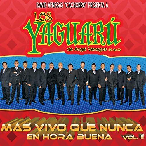 Los Yaguarú De Angel Venegas S.A. de C.V.