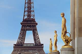 Eiffel Tower and Les Oiseaux Statues by Cora Niele Art Print, 30 x 20 inches