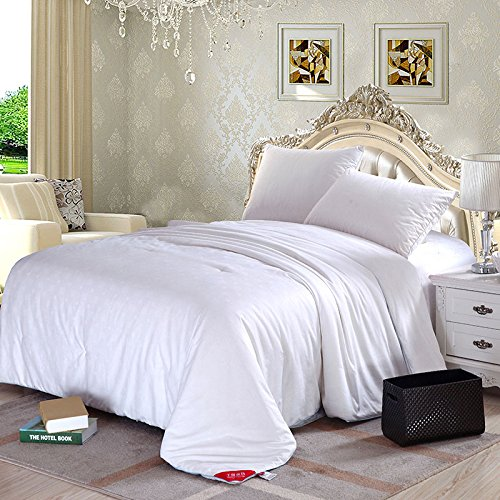 """Silklover Pure Top Grade Mulberry Silk Comforter with Sateen Cover Queen Size 90"""" 92"""" for All Seasons"""
