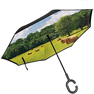 Big Straight Umbrella, with C-Shaped Handle, Double Layer Canopy Farmhouse Decor Collection Farmland after Harvest Peaceful Terrain Remote Rural Country Plantation Seasonal Image Green