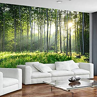 Amazon.fr : papier peint de la Nature décoration de peinture murale ...