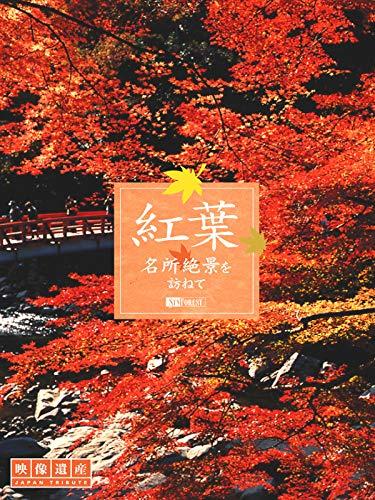 『紅葉 名所絶景を訪ねて』のトップ画像