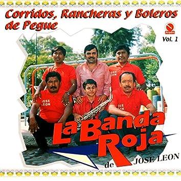 Corridos, Rancheras y Boleros de Pegue, Vol. 1