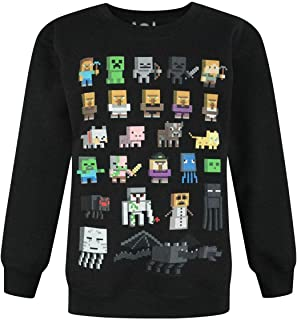 Minecraft Sprites Boy's Black Sweatshirt
