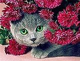 DIY 5D Pintura Diamante kit Flor de gato Full Rhinestone Diamond Painting Set Completo Cristal Rhinestone niño adulto Bordado Punto de Cruz lona Craf para Hogar Decoración Pared regalo 50x60cm