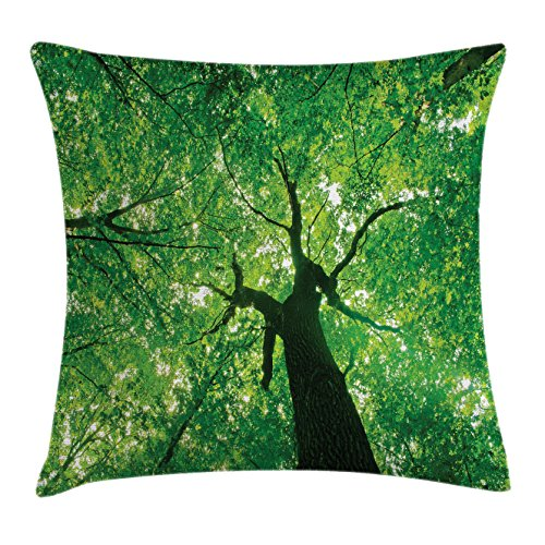 Ambesonne Forest Throw Pillow Cushion Cover, Body of a Tree Evergreen in The Nature Majestic Habitat Morning Image Print, Decorative Square Accent Pillow Case, 18