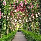 """Musuntas Girlande Vintage/Rustikal Kraftpappe """"Just Married,Hochzeits-Girlande, Banner - als Deko zur Hochzeit mit weißen Schriftzug"""