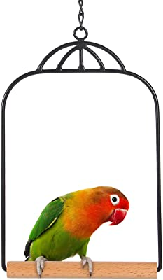 Tenforie Hummingbird Swing Bird Toys Tiny Swing Parrot Bird Toy Finch Parrotlet Cages Parrot Cage Parakeet Cockatiel Budgie Perch