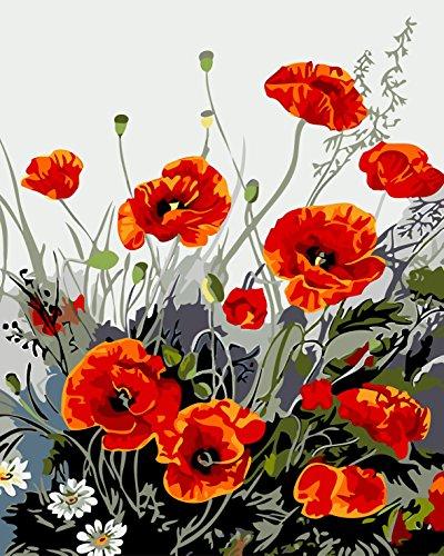 Fuumuui DIY Malen Nach Zahlen-Vorgedruckt Leinwand-Ölgemälde Geschenk für Erwachsene Kinder Kits Home Haus Dekor - Mohnblumen 40*50 cm