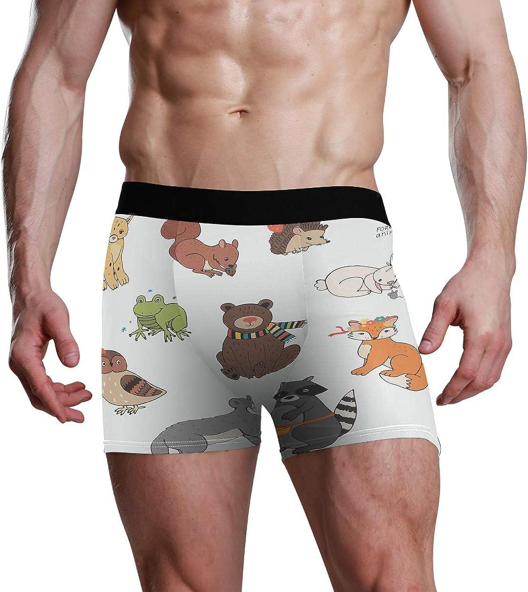 Men's Boxer Briefs Forest Animals Vector Illustrations Set Bikini Underwear Stretch Trunks Boys Underpants