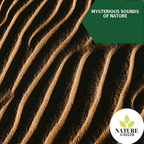 Sounds of Nature Noise & Nature Sound Series