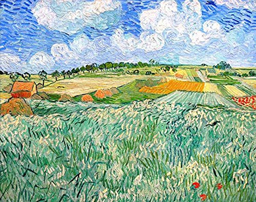 Van Gogh's Famous Painting - The Plains of Orvison 5D Diamond Painting Kits Full Drill Rhinestone Painting By Number, DIY Cross Stitch Embroidery Craft for Adults, Decor Gift(11.8x15.7 Inches)