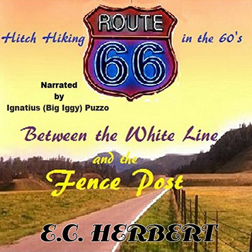 Between the White Line and the Fence Post audiobook cover art