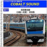 0317-38 (川口~西川口) 京浜東北線・根岸線 E233系