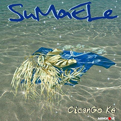 Sumaele