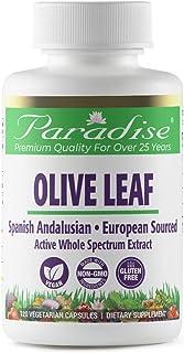 Olive Leaf 18% Oleuropein