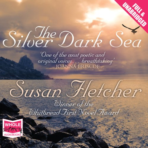 The Silver Dark Sea cover art