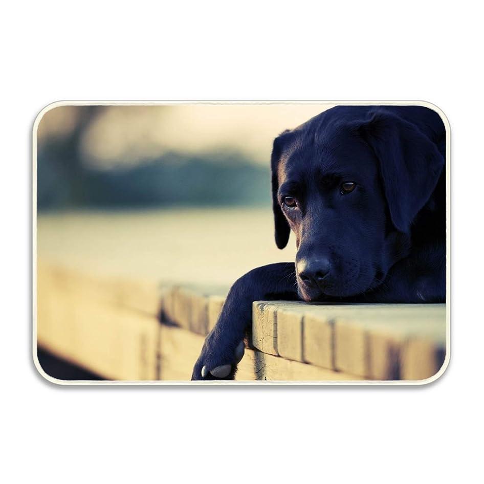 幅期待余剰Tシャツ悲しい犬の顔ポロシャツ 半袖 カジュアル 格好いい 後ろプリント 通学 男性 Tシャツ メンズ ラペル ゴルフウェア ユニフォーム