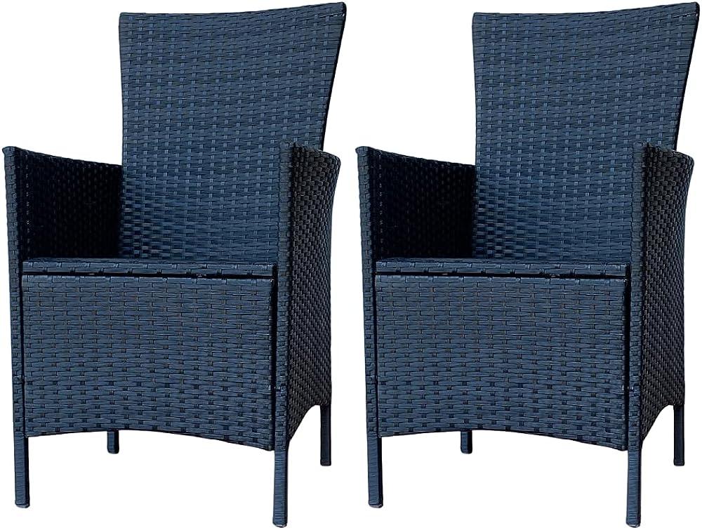 Zik set di 2 sedie da giardino con braccioli in rattan resistente alle intemperie