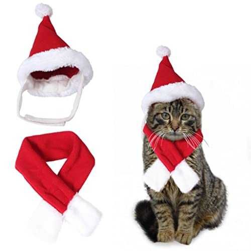Cute Santa Hat & Scarf Xmas Red Costume Suit Dress Up for Pet Dog Cats  Fashion - Cat Dress Up: Amazon.co.uk