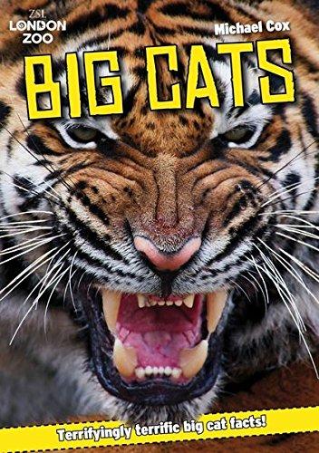 ZSL Big Cats