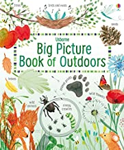 Big Picture Book of Outdoors (Big Books)