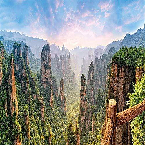 HD Mountain Forest Bild Wand Leinwand Malerei Natur Landschaft Poster Drucke Dekoration für Wohnzimmer 60x48cm