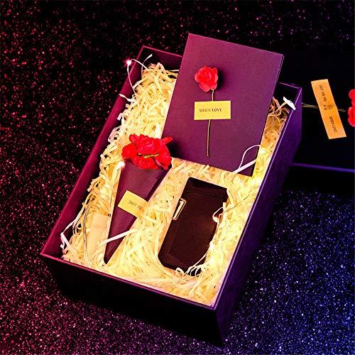 Accendino al plasma antivento,con indicatore batteria e confezione regalo, accendino elettrico antivento ricaricabile ricaricabile USB con per campeggio all'aperto avventura avventura fuoco,Rosso