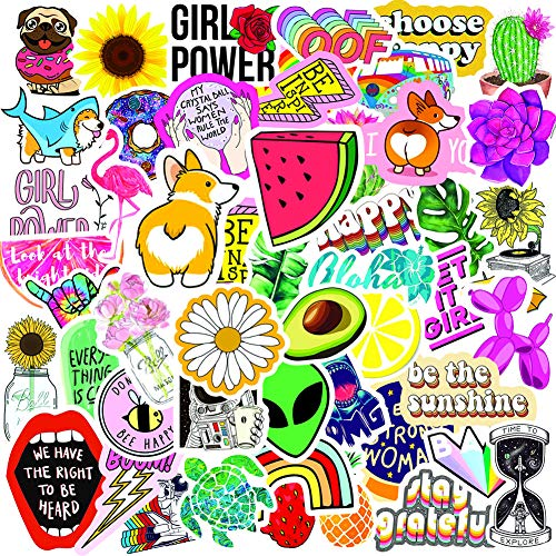 Laptop Stickers (50 Pack), Aesthetic Vinyl Stickers for Girls Teens Adults, Cute Water Bottle Stickers, Waterproof VSCO Decal Stickers for Flask Skateboard Luggage Guitar Phone