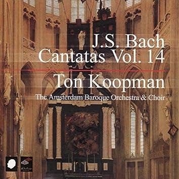 J.S. Bach: Cantatas Vol. 14