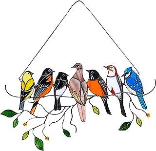 Vögel als Haustiere: Welchen gefiederten Freund sollten Sie wählen?