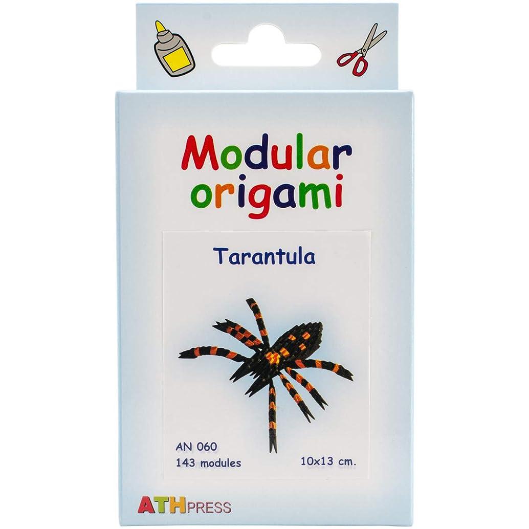 ATH Press AN060 Modular Origami Kit