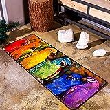 Wjvnbah Alfombras Pintura Manta Alfombra Colores magnífica del Loro Estudio Escaparate Alfombra de Arte (Size : 70 * 180cm)