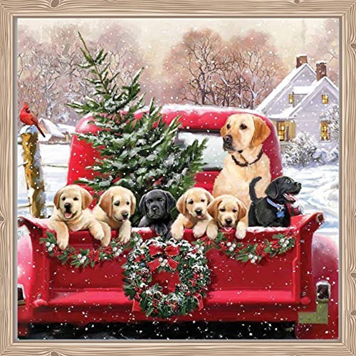 Diamond Painting Kits for Adults , DIY 5D Full Drill Crystal Rhinestone Embroidery Pictures Art Craft for Relaxation and Home Wall Decor 15.8 x 15.8 Inches-Christmas Diamond Painting Dog