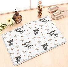 Area Rug Lightweight Doormat Memory Sponge Indoor Outdoor Decor Living Room Bedroom Office Kitchen (23.6