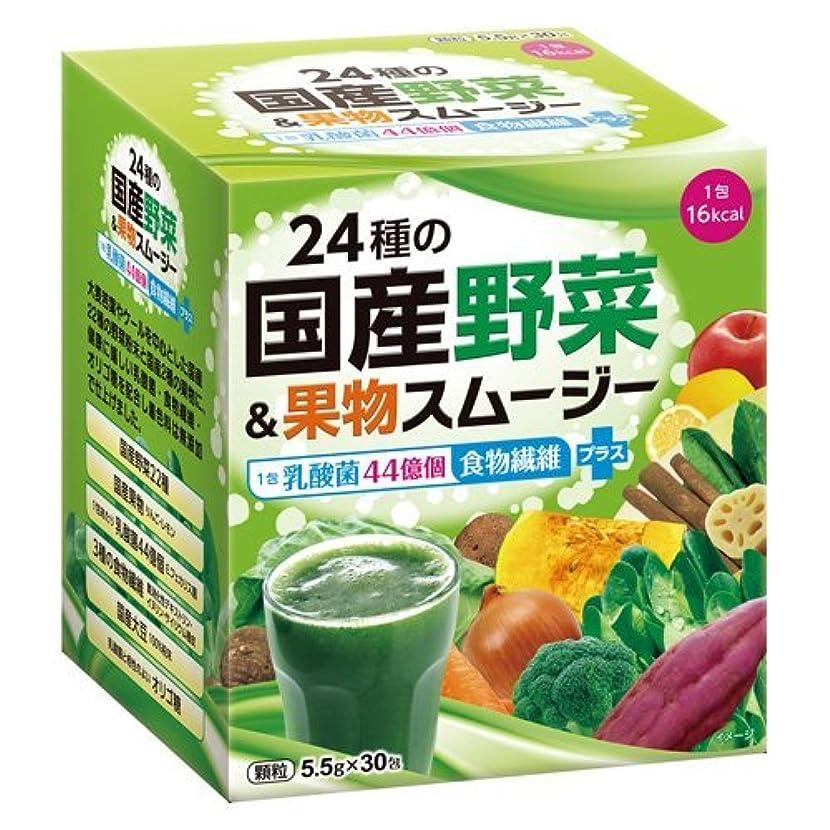 霧飼料失業24種の国産野菜&果物スムージー 165g(5.5g×30包)