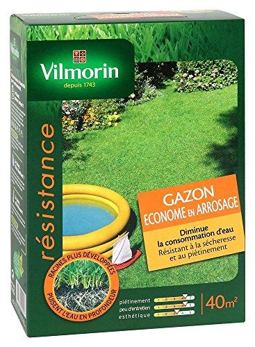 Vilmorin 4471253 Gazon Econome Arrosage Boîte de 1 kg