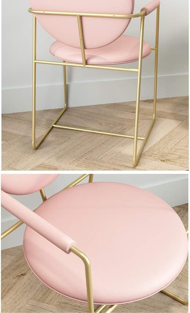 Président WGZ- Chaise de Salle, Chaise de Bureau Simple, créative Dossier, Chaise Loisirs, Maison Adulte Chaise de Salle Simple (Color : Green) Pink