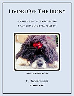 Living Off The Irony: My Turbulent Autobiography (Living Off The Irony Book 2)